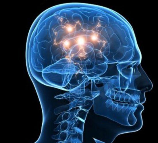 epilepsia-brain